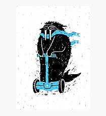 Easy Ridin' Walrus Photographic Print