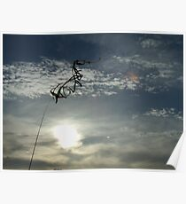 Wind Sock Poster