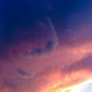 Summer Cloudscape 2 by Shawna Rowe