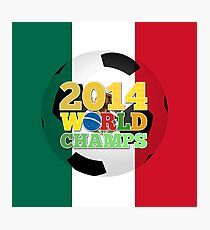 2014 World Champs Ball - Mexico Photographic Print
