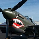 Curtiss P- 40 N - Kittyhawk.............! by Roy  Massicks