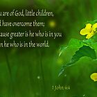 Greater is He ~ 1 John 4:4 by Robin Clifton