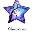 Reach for the Stars by Linda Callaghan