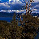 Emerald Bay, California by crimsontideguy