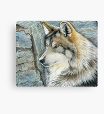 The Grey (but Colorful) Wolf Canvas Print