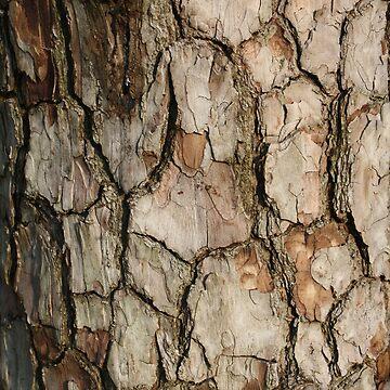 Tree Bark by DiamondCrusade
