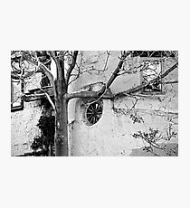 Santa Fe Adobe and Tree Photographic Print