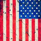 Peeling painting USA flag by leksele