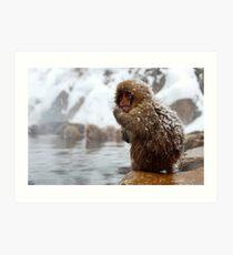 Snow monkey Art Print