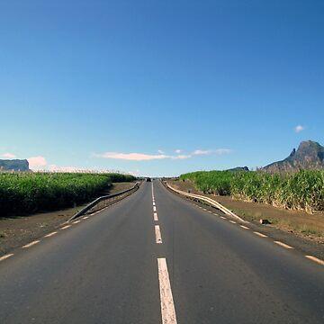 road (Mauritius) by FedericoFaggion