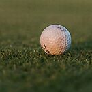 The Golf Ball by cadman101
