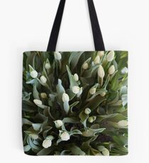 TULIPS FROM ABOVE Tote Bag