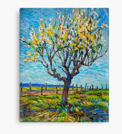 Apricot Tree Canvas Print