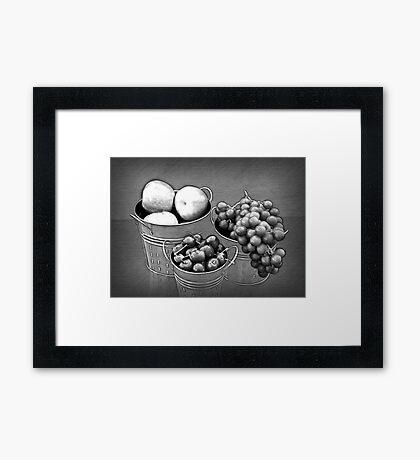 Fruit without Color Framed Print