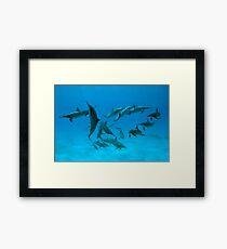Red Sea Ballet Framed Print