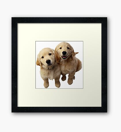 Puppies! Sale!!! Framed Print