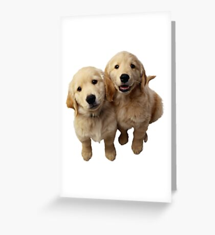 Puppies! Sale!!! Greeting Card