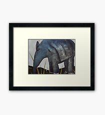Bird on Baby Elephant Framed Print