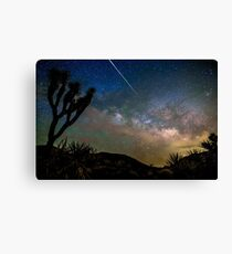 Camelopardalid Meteor Strike Over Joshua Tree Milky Way Canvas Print