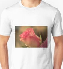 Soft Pink and White Rose, As Is T-Shirt