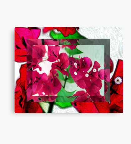 Bougainvillea Art Canvas Print