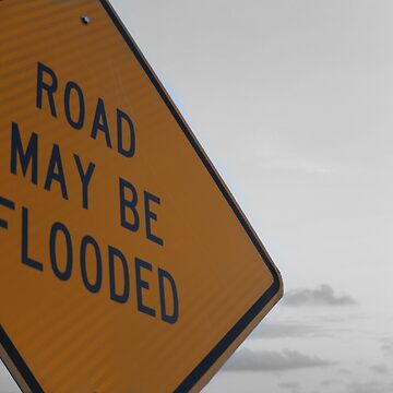 Road May Be Flooded by lanaxbug