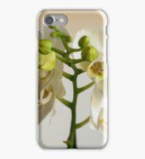 Orchidea iPhone Case/Skin