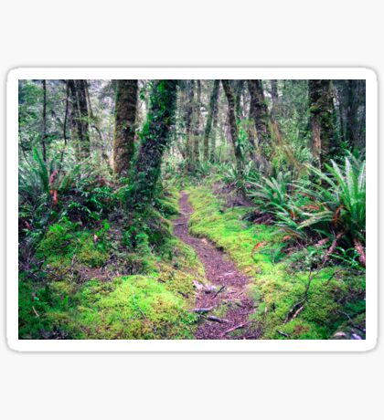 Idyllic footpath in the forest  Sticker