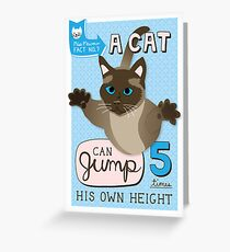 A cat can jump 5 times his own height. Greeting Card