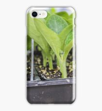 Ready to Plant iPhone Case/Skin