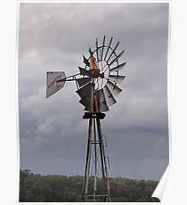 Weather Vane Poster