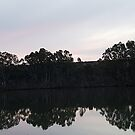 Murray River reflection by sharon wingard