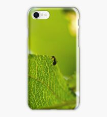 Ant Scout. iPhone Case/Skin