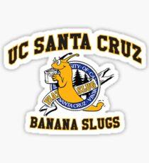 UCSC Banana Slugs Sticker
