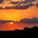 Tropical sunset with red sky, clouds and horizon line by Anton Oparin