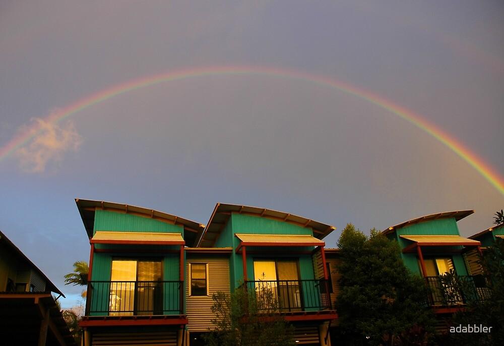 Rainbow Sunset  by Trevor Needham