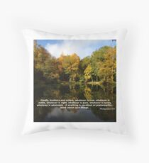 Philippians 4:8 Throw Pillow