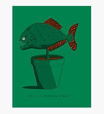 Piranha Plant Photographic Print