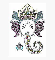 Ganesh the Elephant Photographic Print