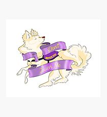 """Sassy Service Dogs 
