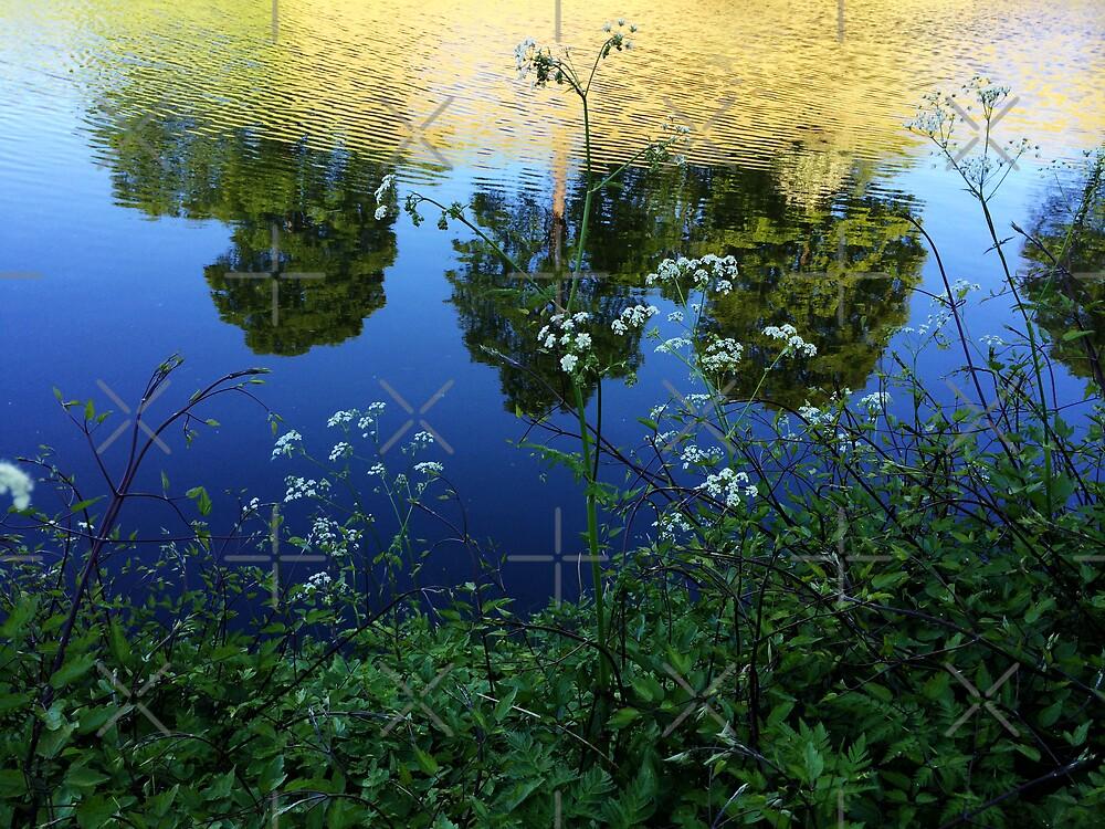 Afternoon #2 by Hekla Hekla