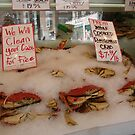 Crabs by Cathy Jones