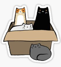Cats in a Box Sticker