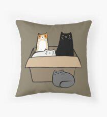Katzen in einer Box Dekokissen