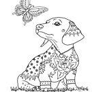 Art of Dachshund - Doxie with Butterfly by dvampyrelestat