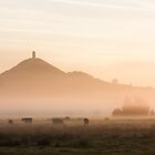 Mist over Avalon by Dan Cooke Photography