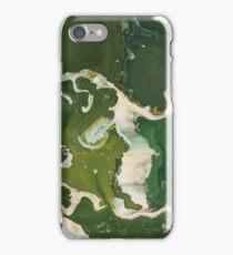 Revealing #004 iPhone Case/Skin