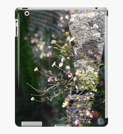 Wall Daisies  iPad Case/Skin
