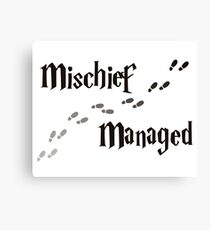 Mischief Managed Canvas Print