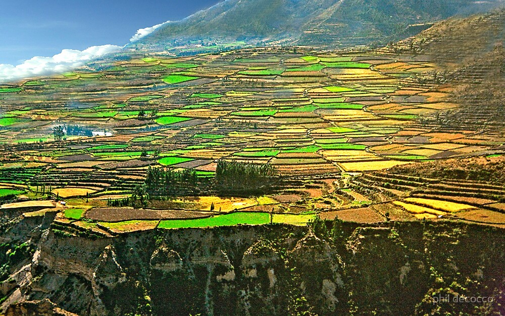 Sacred Valley Of The Incas by phil decocco